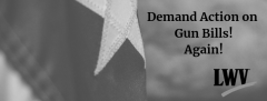 Flag with Demand Action on Gun Bills. Again.