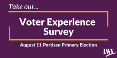 Graphic of our voter experience survey.