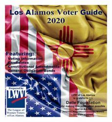 20200101-VoterGuideImage General Election 300x300