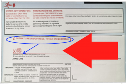 Sign your mail-in ballot envelope