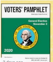 Washington Voters Guide 2020