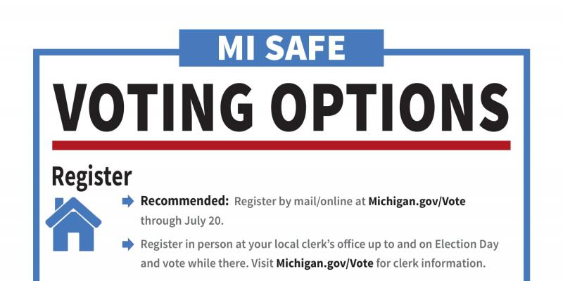 August 4, 2020 voting options