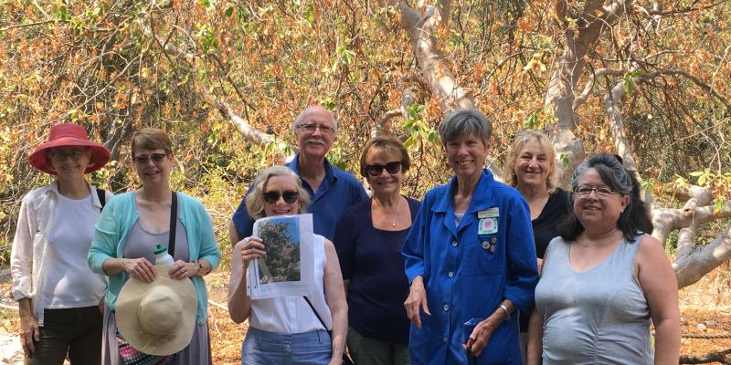 Summer social hiking and learning about California Native plants. Member Susan Hallgren led the hike