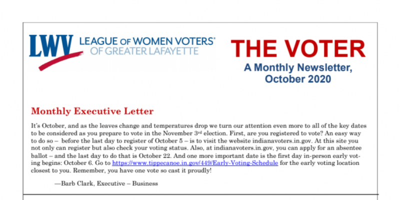 Screenshot of the top half of the VOTER newsletter