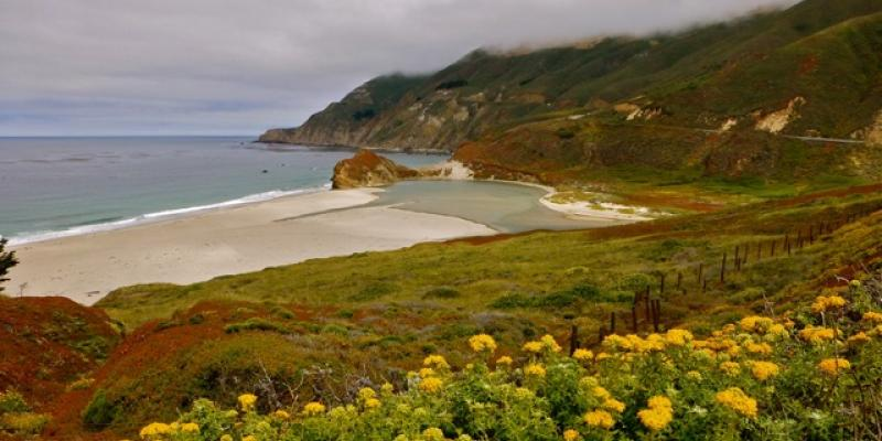 Big Sur Coast by Rita Costa-Hollmann