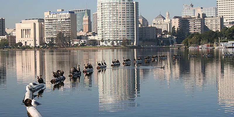 Photo of Lake Merritt, with Downtown Oakland in the background