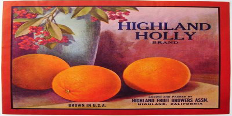 Old Highland Orange Box Label