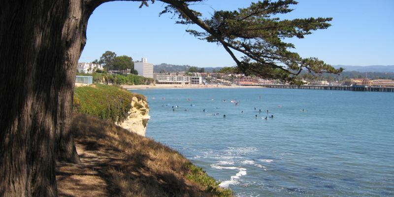 Santa Cruz Wharf from West Cliff Drive