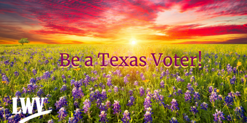 "Sunset with bluebonnets. ""Be a Texas Voter!"""