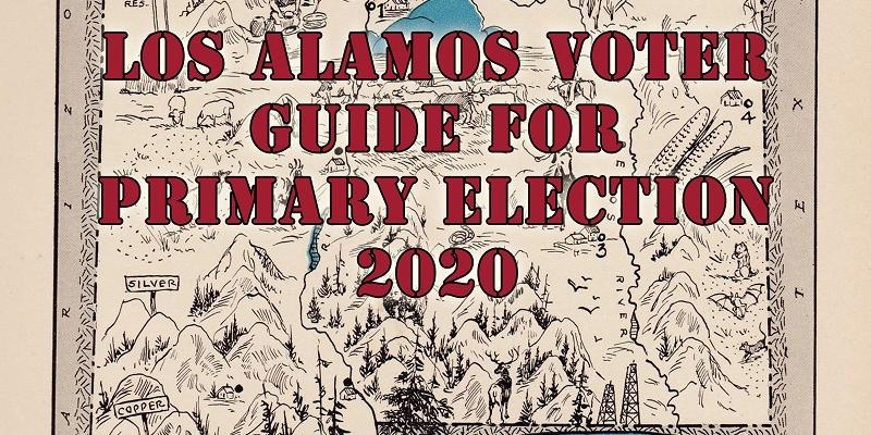 Voters Guide Primary Election 2020 Cover 800x1000